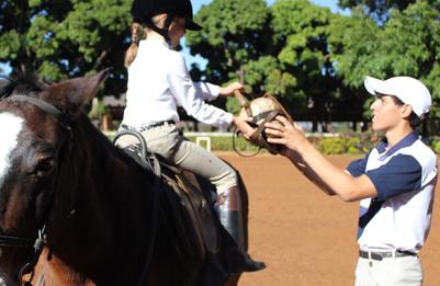 f74891410 Escola de Equitação da Hípica - Brasília DF