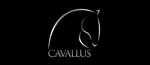 cavallus